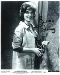 Barbara Shelley - Genuine Signed Autograph 7135